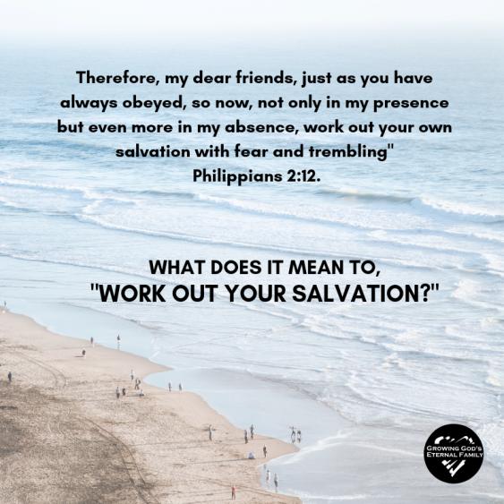 SALVATION-2.png